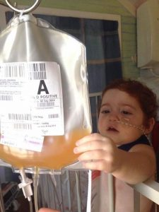Margot inspecting one of her many platelet donations